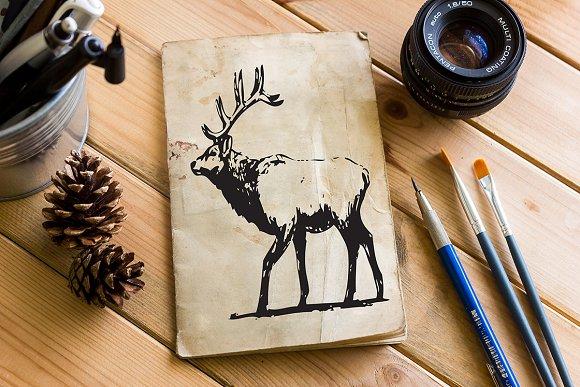 Hand Drawn Wild Elk