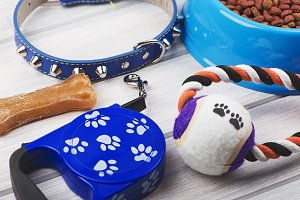 Leash, jugute, bone and bowl of dog food