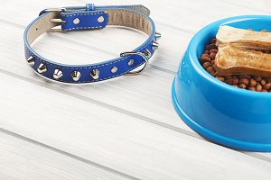 From above blue leather strap, bones on bowl of puppy chow on wooden table.