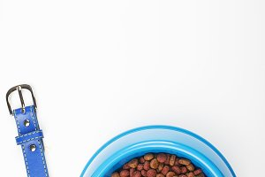Dog food strap and bowl. Vertical studio shot.