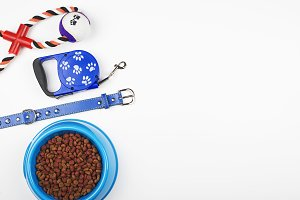 Leash, toy and bowl of dog food. Copy space.