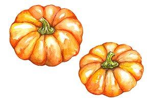 Watercolor orange pumpkin isolated