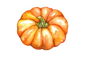 Watercolor orange pumpkin isolated