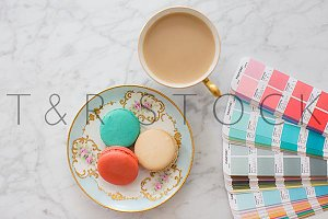 Blue & Pink Pantone PMS & Macarons