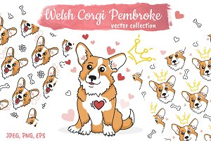 Cute Corgi. Vector collection.
