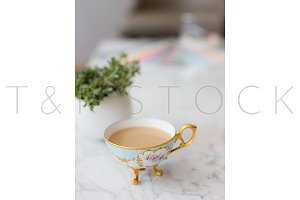 Vintage Tea Cup and Succulents Stock