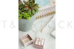 Succulent, Planner, Rose Ring Box