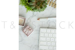Succulent White Keyboard Desktop