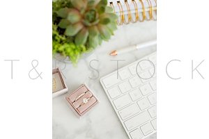 Succulent, Planner, Keyboard, & Ring