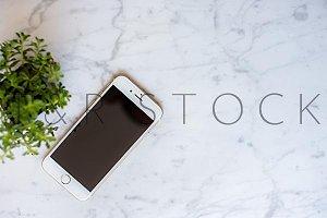 Desktop Mockup Phone Plant Flat Lay