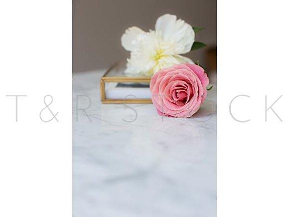 Marble Mockup Pink Rose Peonies