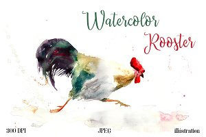 SALE Watercolor rooster illustration