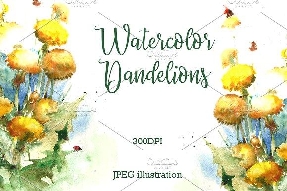 SALE Watercolor Flowers Of Dandelion