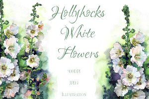 SALE! Watercolor Hollyhocks flowers