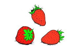 Hand Drawn Strawberry Illustration