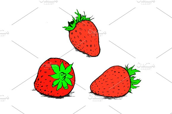 Hand Drawn Strawberry Illustration
