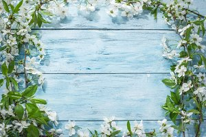 Blooming cherry twig over old wood