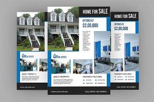 Real Estate Flyer Template V584