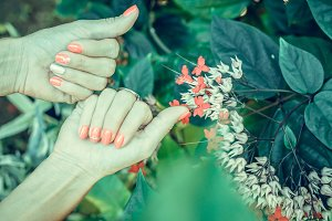 Closeup of hands of a young woman with red manicure on nails against natural green tropical background.