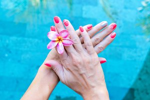 Plumeria frangipani flower in woman hand on a swimming poolbackground