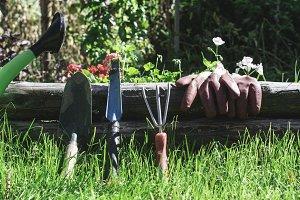 Garden tools on green meadow