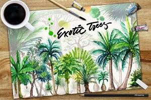 Watercolor Exotic Trees