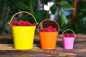 Ripe red raspberries