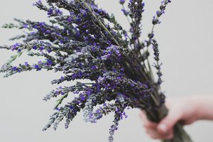 Hand held lavender flower bouquet