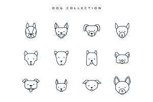 Set dogs in linear style. 12 face breeds puppy. Vector Illustration