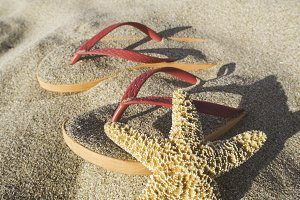 Sandals on the beach in the sand