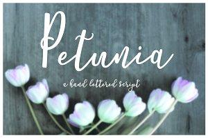 Petunia Script
