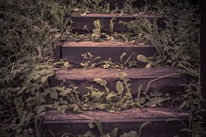 Abandoned wooden stairs