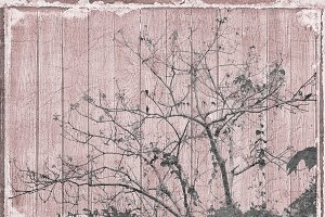 Grunge Nature Background Design