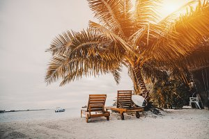 Palms and beach chairs