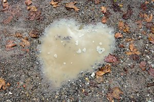 Heart puddle