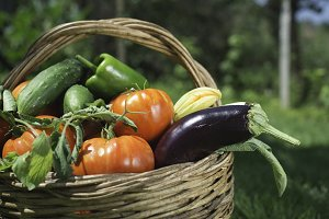 Vegetables in a wooden basket
