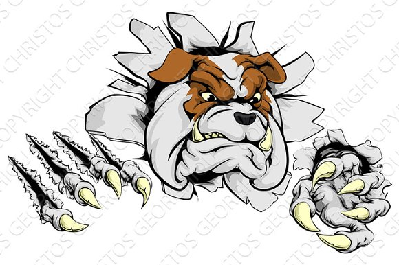 Bulldog Ripping Through Background