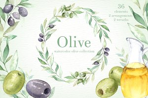 Olive Watercolor clipart