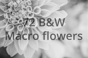 72 BLACK AND WHITE MACRO FLOWERS