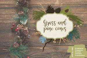 Grass & pinecone. Vector collection