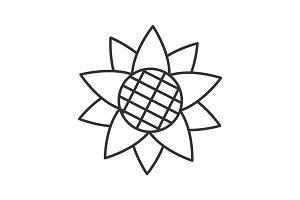 Sunflower head linear icon