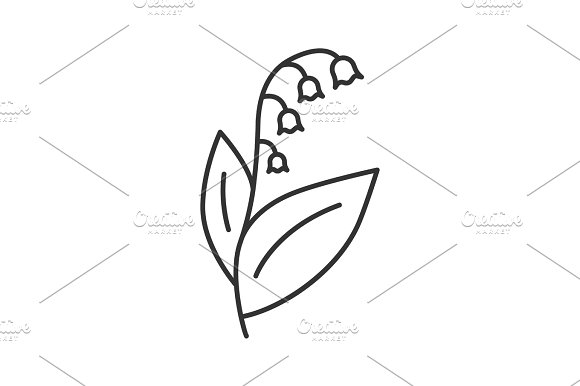 Lily Of The Valley May-lily Linear Icon