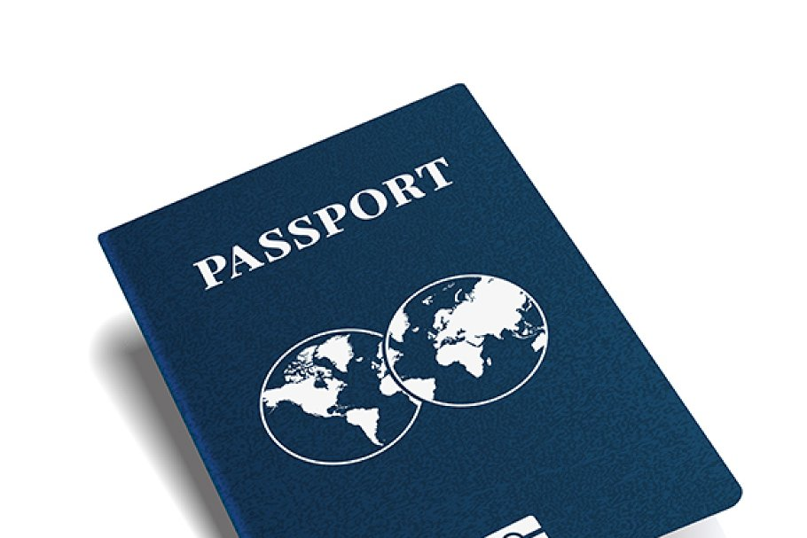 International passport cover