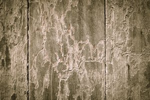 Texture surface wood style