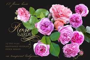 Rose Garden Stock Images PS Overlays