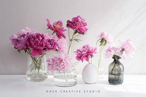 Pink Peonies in Vases