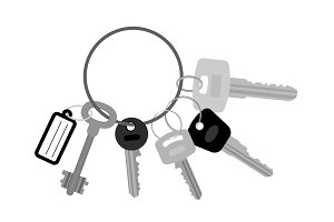 Key set with keyring