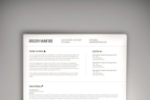 The Professional CV (PSD + WORD DOC)