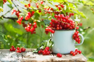 Metal mug with ripe red currant on the table