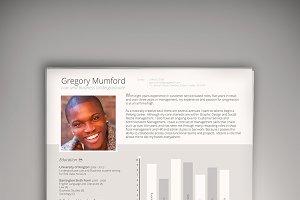 CEO CV/Resume